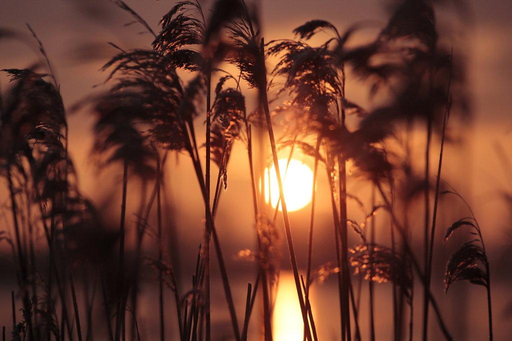 Sunrise in Bad Sülze